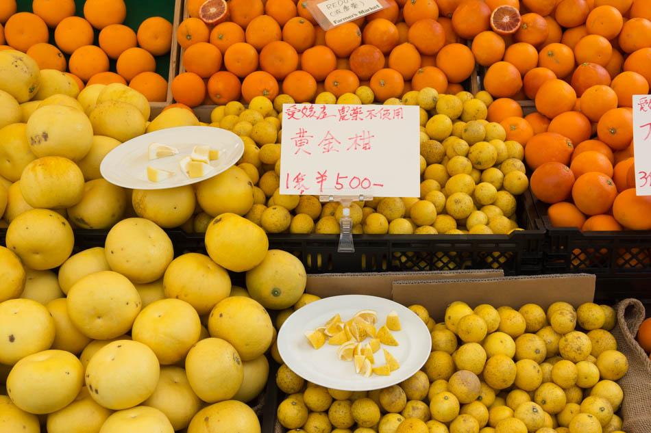 bio-essen-japan-bioblog_c_arianebille-24