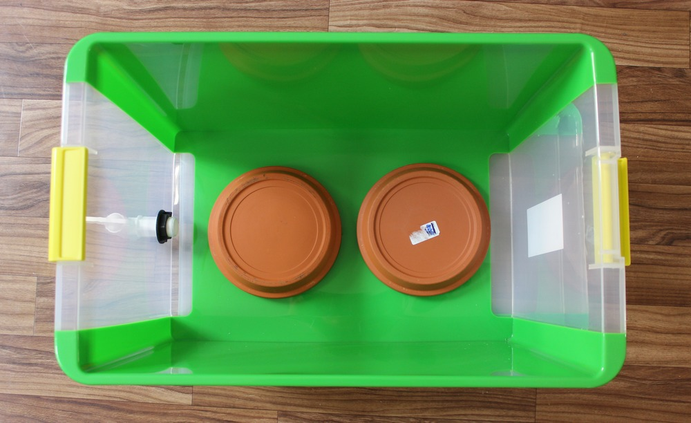 Wurmkiste wurmcafe wurmbox kompost wurmkompost anleitung selber bauen würmer 4