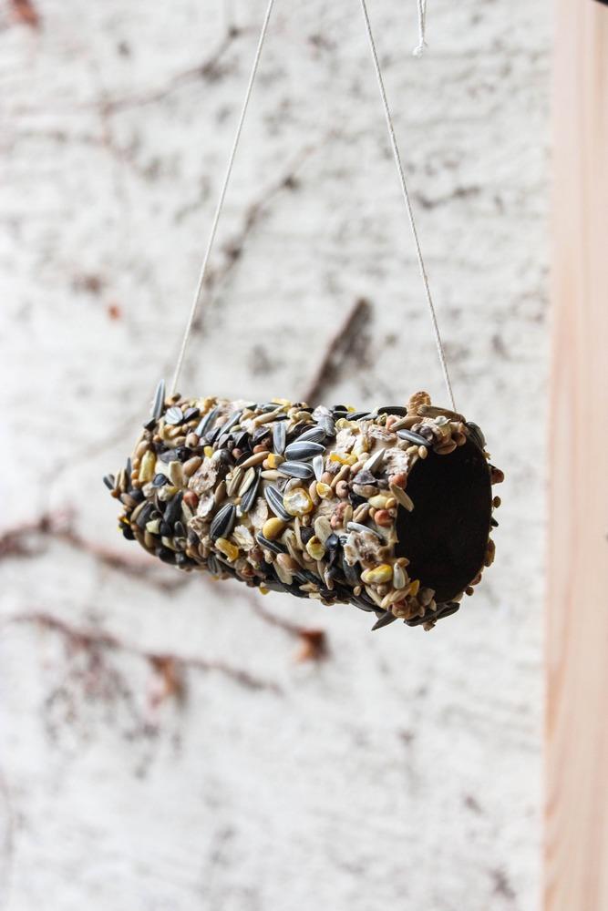 Wildvögel Vogelfutter im Winter diy Bird Box Bio Aries selbstgemacht ökologisch