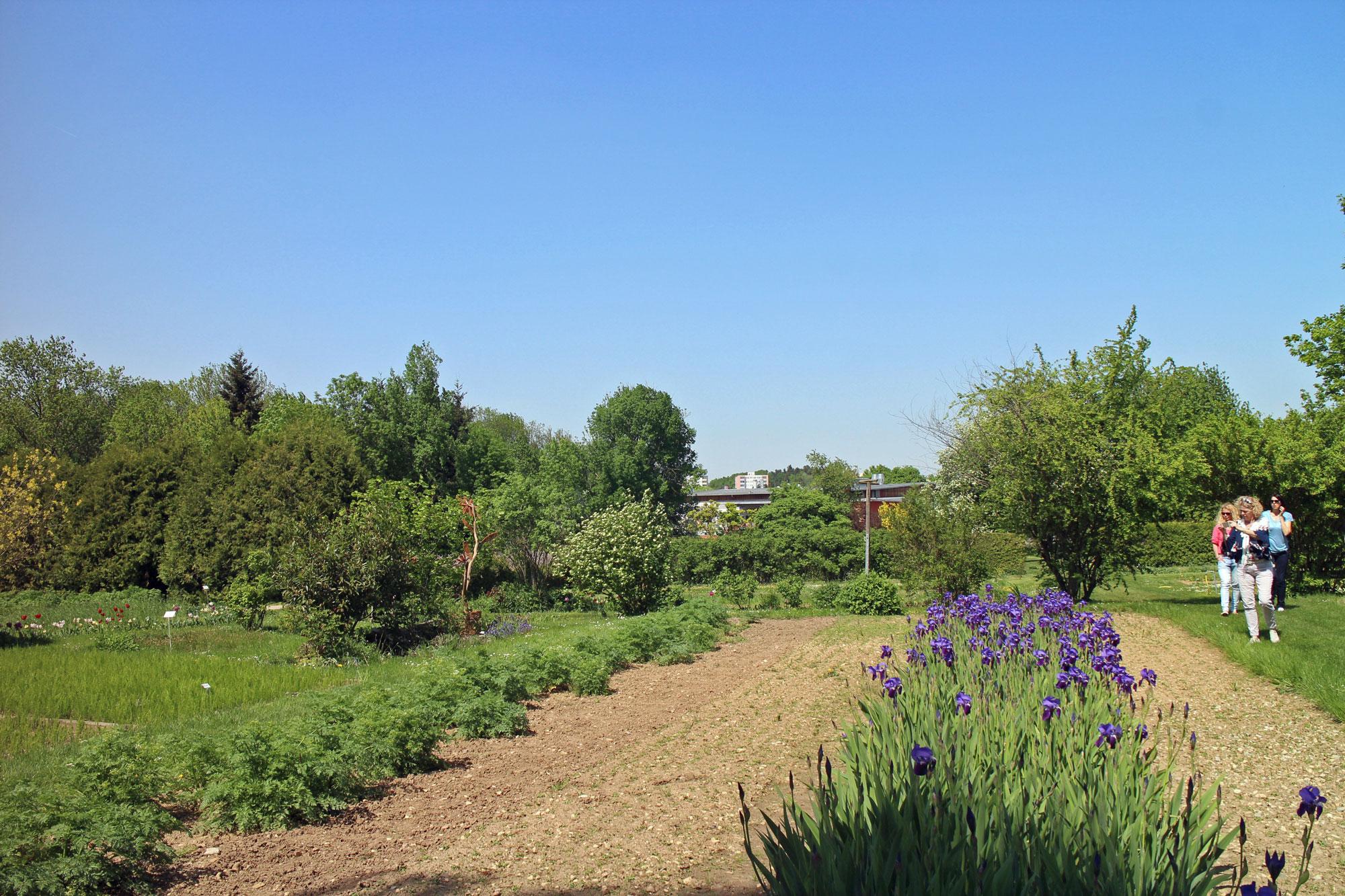 Weleda Heilplfanzengarten