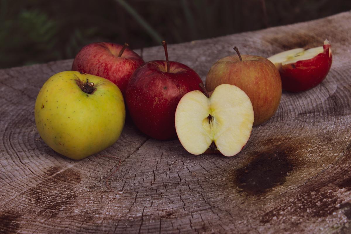 Herbst Apfel bio ökologisch züchtung apfelpunsch vegan apfelsaft (2)
