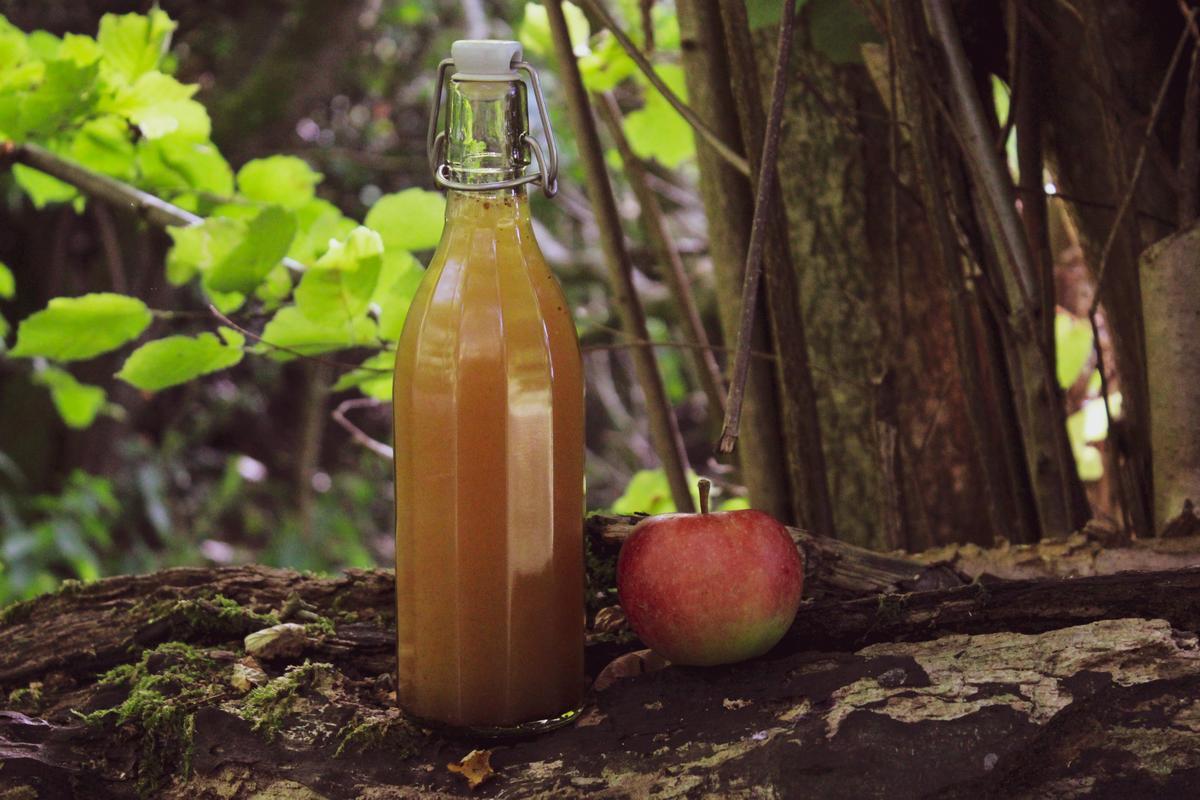 Herbst Apfel bio ökologisch züchtung apfelpunsch vegan apfelsaft (3)