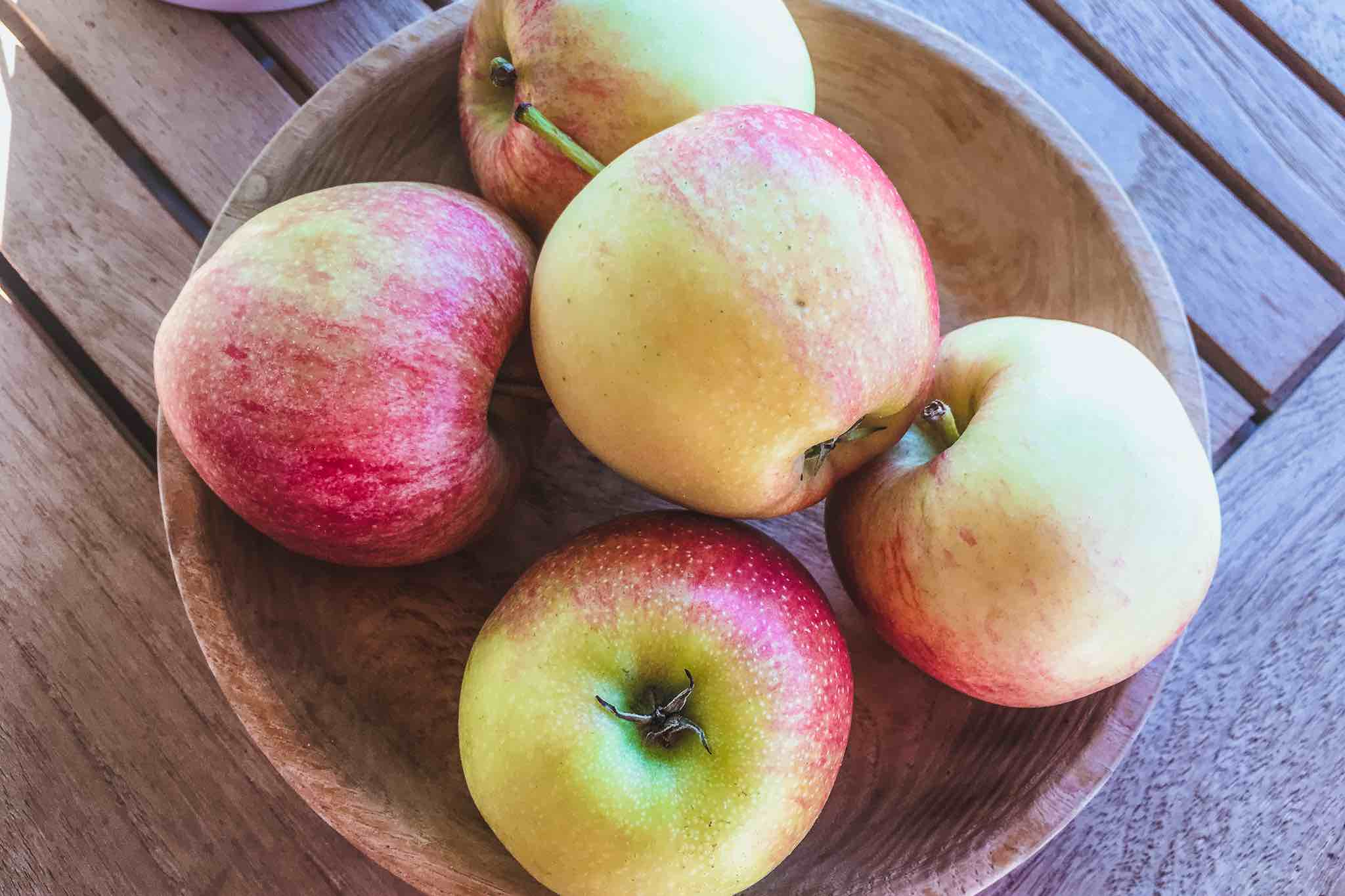 Ökologische Apfelzüchtung