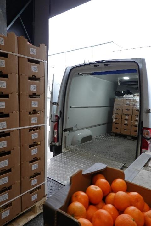 Unser Engagement für mehr Lebensmittelwertschätzung: Blick in das Büschen der Hofer Tafel