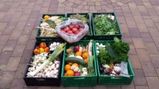 Kisten mit Obst und Gemüse aus einer Abholung